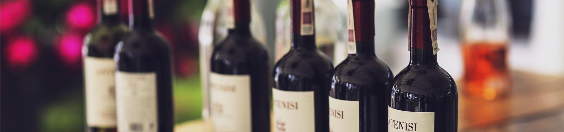 מקרר יין DVV2 LA SOMMELIERE